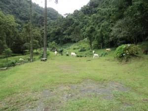 Agrolandia, Santa Catarina, Brasil